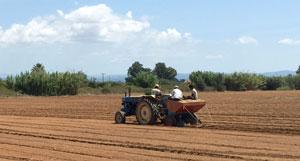 Από 1η Οκτωβρίου η αύξηση του ειδικού φόρου κατανάλωσης του πετρελαίου για τους αγρότες